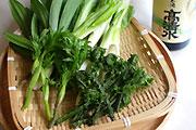 山菜の天ぷら材料